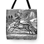 Laplander, C1785 Tote Bag