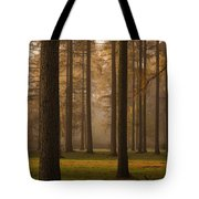 Larch Grove Tote Bag by Anne Gilbert