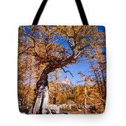 Larch Tree Frames Prusik Peak Tote Bag