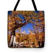 Larches Frame Prusik Peak Tote Bag