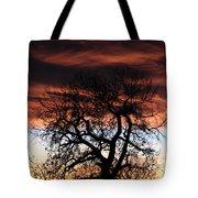 Large Cottonwood At Sunset Tote Bag