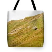 Large Flock Of Herded Sheep On A Steep Hillside Tote Bag