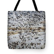 Large Flocks Of Migratory Birds Stop Tote Bag