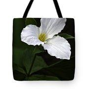 Large Flowered Trillium Tote Bag