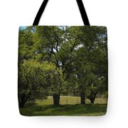 Large Green Oak Trees Tote Bag