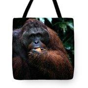 Large Male Orangutan Borneo Tote Bag