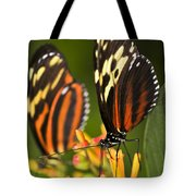 Large Tiger Butterflies Tote Bag