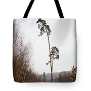 Large Trees In The Nature Park In Winter Tote Bag