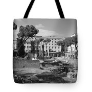 Largo Di Torre - Roma Tote Bag