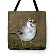 Lark Sparrow Tote Bag