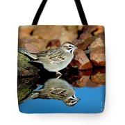 Lark Sparrow Chondestes Grammacus Tote Bag