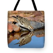 Lark Sparrow Drinking Tote Bag