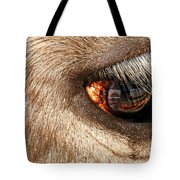 Lashes Tote Bag by Diana Angstadt
