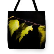 Last Autumn Gifts Tote Bag
