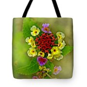 Last Blooms Number Four Tote Bag