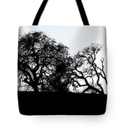 Final Journey Tote Bag