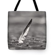 Last Days Of Summer In Black And White Tote Bag