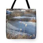 Last Days Of Winter Tote Bag