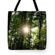 Last Light In The Forest Tote Bag