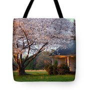 Last Light Of Day In Early Spring Tote Bag