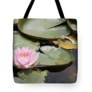 Last Lily Of Fall Tote Bag