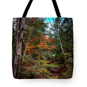 Last Of The Color On Green Bridge Road Tote Bag