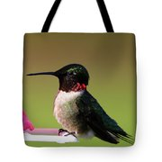 Last Of The Evening Sun Tote Bag