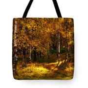 Last Song Of The Autumn 1 Tote Bag