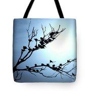 Lasy Birds Tote Bag