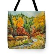 Latah Creek Fall Colors Tote Bag