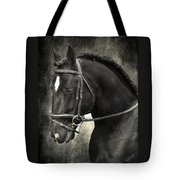 Latcho's Shadow  Tote Bag