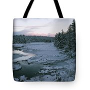 Late Afternoon In Winter Tote Bag