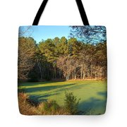 Late Afternoon Long Shadows Tote Bag