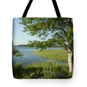 Late Afternoon On Worden Pond Tote Bag