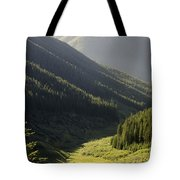 Late Afternoon Shroud Tote Bag