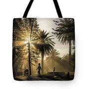 Late Afternoon Sunbeams Tote Bag
