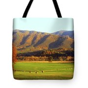 Late Autumn Afternoon In Cades Cove Tote Bag