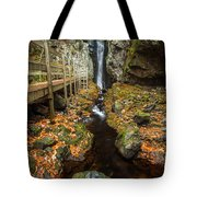 Late Autumn At The Fall Of Song Tote Bag