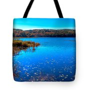 Late Autumn On Loon Lake Tote Bag