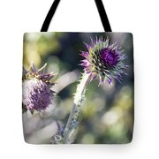 Late Bloomers Tote Bag by Dana Moyer