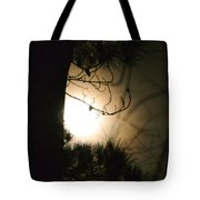 Late December's Farewell Tote Bag