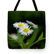 Late Summer Bloom Tote Bag