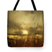 Late Summer Sun Through The High Grass Tote Bag