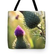 Late Summer Thistle - 2 Tote Bag