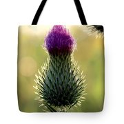 Late Summer Thistle Tote Bag