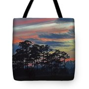 Late Sunset Trees In The Mist Tote Bag