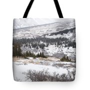 Late Winter Storm Tote Bag