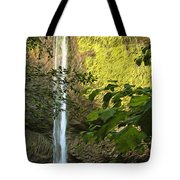 Latourell Falls I Tote Bag
