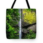 Latourelle Falls Tote Bag