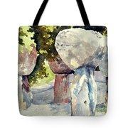 Latte Stone Tote Bag